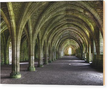 Fountains Abbey 3 Wood Print by Svetlana Sewell