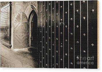 Four Doors To Choose Wood Print