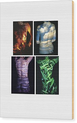 Four Elements Wood Print by Arla Patch
