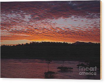 Wood Print featuring the photograph Four Elements Sunset Sequence 2 Coconuts Qld by Kerryn Madsen - Pietsch