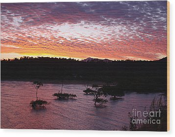 Wood Print featuring the photograph Four Elements Sunset Sequence 3 Coconuts Qld by Kerryn Madsen - Pietsch