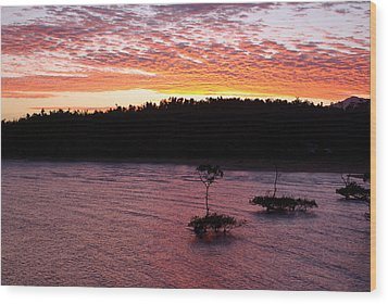 Wood Print featuring the photograph Four Elements Sunset Sequence 5 Coconuts Qld  by Kerryn Madsen - Pietsch