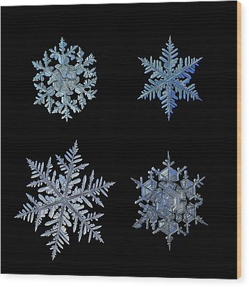 Wood Print featuring the photograph Four Snowflakes On Black Background by Alexey Kljatov