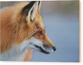 Fox Profile Wood Print