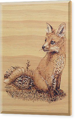 Fox Pup Wood Print by Ron Haist