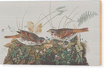 Fox Sparrow Wood Print by John James Audubon