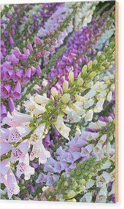 Foxglove Card Wood Print by Carol Groenen