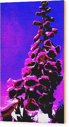 Wood Print featuring the painting Foxglove by Renate Nadi Wesley