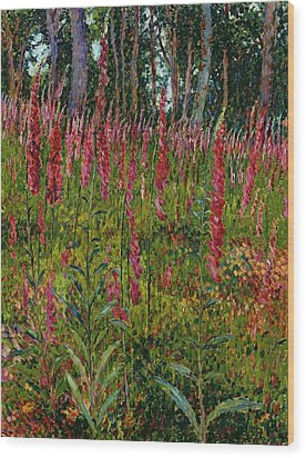 Foxgloves Wood Print by Georges Lacombe