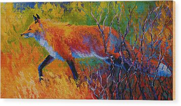 Foxy - Red Fox Wood Print