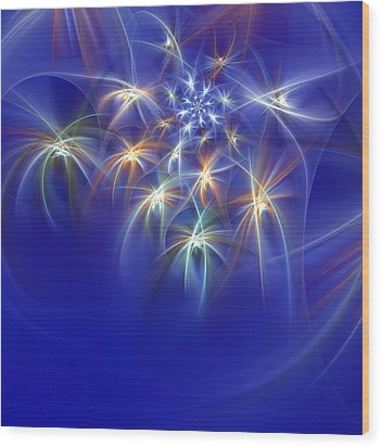 Fractal Fireworks Wood Print by Richard Ortolano