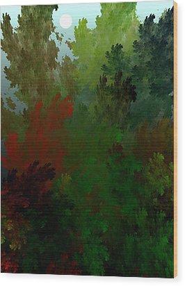 Fractal Landscape 11-21-09 Wood Print by David Lane