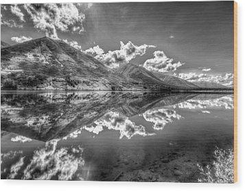 Fractal Reflections Wood Print by Don Mennig
