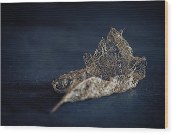 Wood Print featuring the photograph Fragment by Tim Nichols