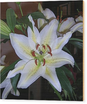 Fragrant White Lily Wood Print by Valerie Ornstein