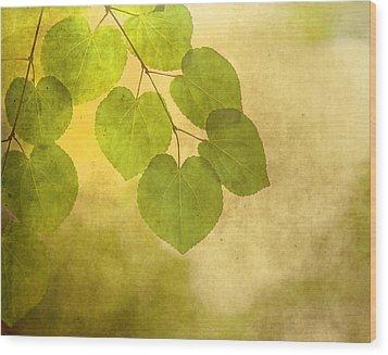 Framed In Light Wood Print