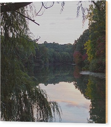 Framed Lake Reflection  Wood Print by Justin Connor