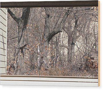 Framing Tangled Dunescape Wood Print by Ann Horn