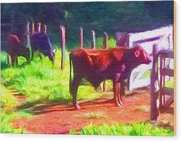 Franca Cattle 2 Wood Print