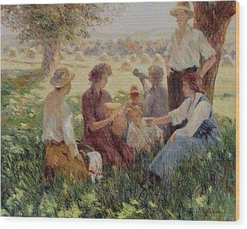 France Country Life  Wood Print