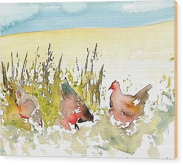 Free Range Wood Print by Carolyn Doe
