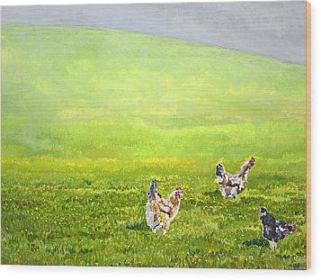 Free Range Chickens Wood Print by Francis Robson