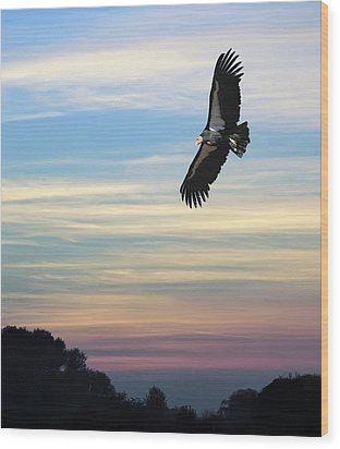 Free To Fly Again - California Condor Wood Print