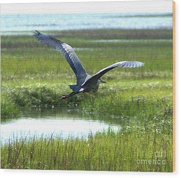 Freedom Flight Wood Print by Debbie May