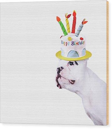 French Bulldog With Birthday Cake Wood Print by Maika 777