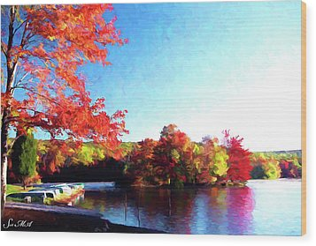 French Creek Fall 020 Wood Print