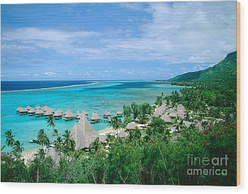 French Polynesia, Moorea Wood Print by Kyle Rothenborg - Printscapes