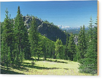 Wood Print featuring the photograph Fresh Air In The Mountains Photo Art by Sharon Talson