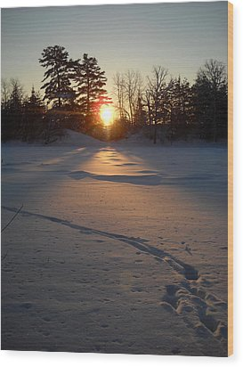 Fresh Deer Tracks At Sunrise Wood Print