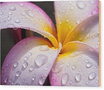 Fresh Flower Wood Print