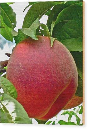 Fresh Peach Wood Print by Gwyn Newcombe