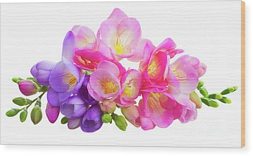 Fresh Pink And Violet Freesia Flowers Wood Print