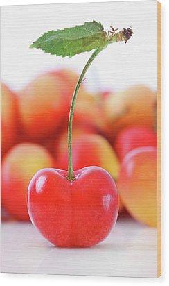 Fresh Ripe Cherries Isolated On White Wood Print by Sandra Cunningham