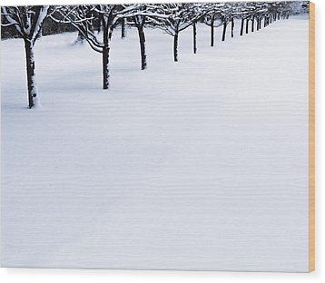 Fresh Snow Wood Print by John Hansen