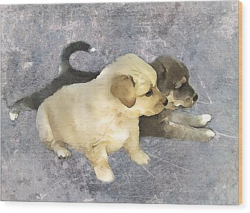 Friends Forever  Wood Print by Svetlana Sewell