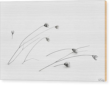 Frigid Wood Print