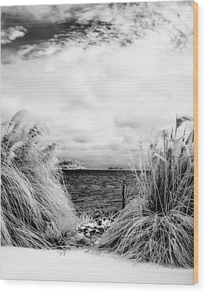 Frigid Shore Wood Print