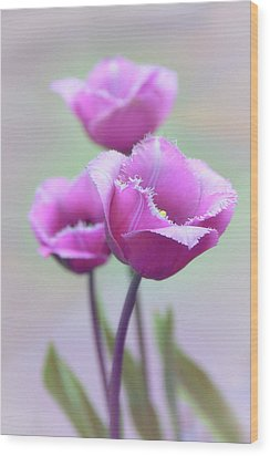 Wood Print featuring the photograph Fringe Tulips by Jessica Jenney