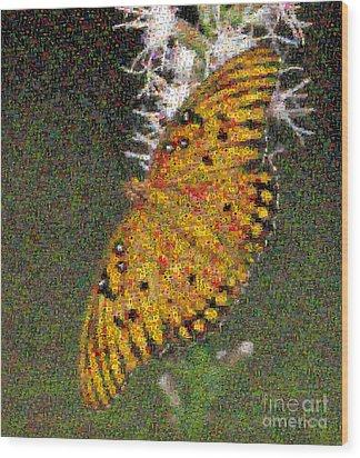 Fritillary Butterfly Mosaic Wood Print by Scott Camazine