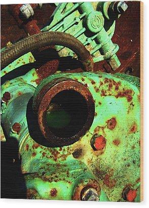 Wood Print featuring the photograph Frog by Cyryn Fyrcyd