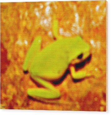 Frog On The Wall Wood Print by Debra     Vatalaro