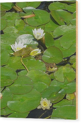 Frog With Water Lilies Wood Print