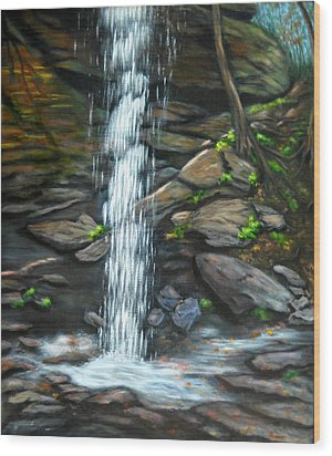 From Behind Moore Cove Falls Wood Print by Sandy Hemmer