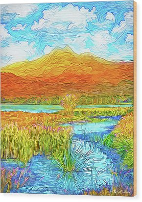 From Sky To Mountain To Stream - Boulder County Colorado Wood Print by Joel Bruce Wallach