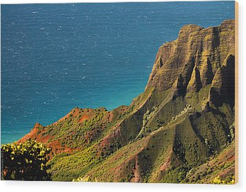 Wood Print featuring the photograph From The Hills Of Kauai by Debbie Karnes