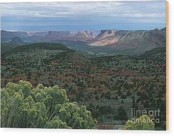 From The La Sal Mountains Wood Print by Stan and Anne Foster